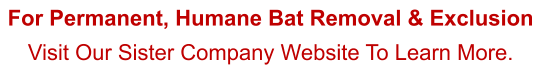 For Permanent, Humane Bat Removal & Exclusion Visit Our Sister Company Website To Learn More.